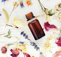 Aromatherapy Treatment | New Port Richey, FL