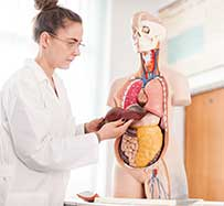 Liver Disease Treatment in Cambridge, OH