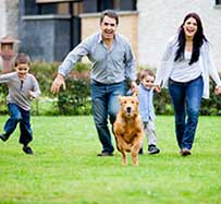 Pet Allergy Treatment in Hurst, TX